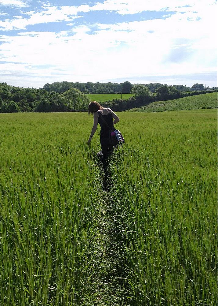 Tracey walking along a public footpath in a field near Walkington - Poppy is there somewhere !
